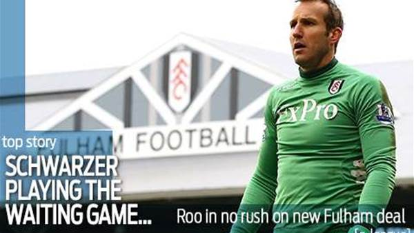 Schwarzer in no rush over Fulham deal