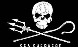 The Sea Shepherd's cyberwar