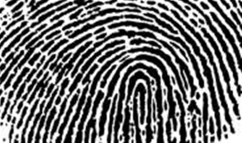 Researchers mine emails for criminal characteristics