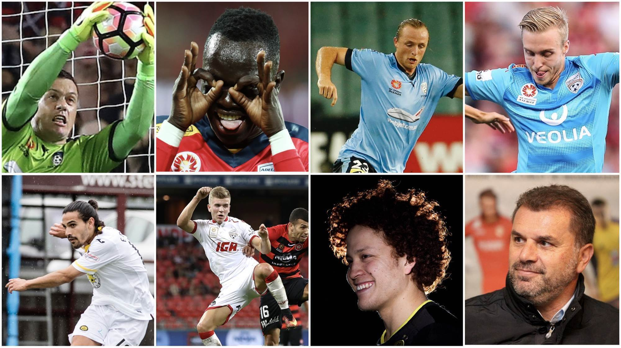 Ange's Magnificent Seven bolters