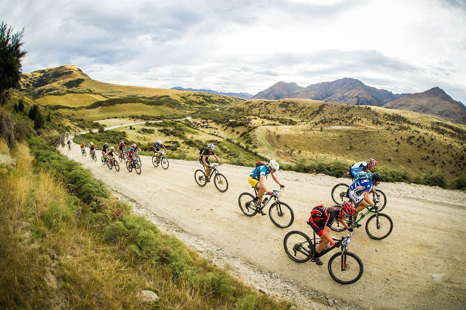 NZ Olympic cyclist Hayden Roulston to line up at Mototapu