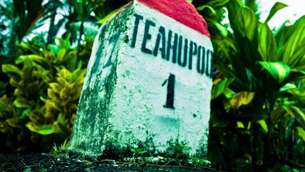 Teahupo'o: Tracks Makes The Calls