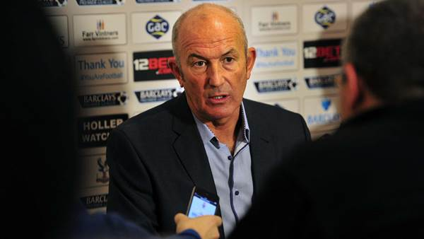 Pulis uncertain over Palace style
