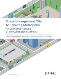 From Underground City to Thriving Metropolis - An Economic Analysis of the Cyber Black Markets