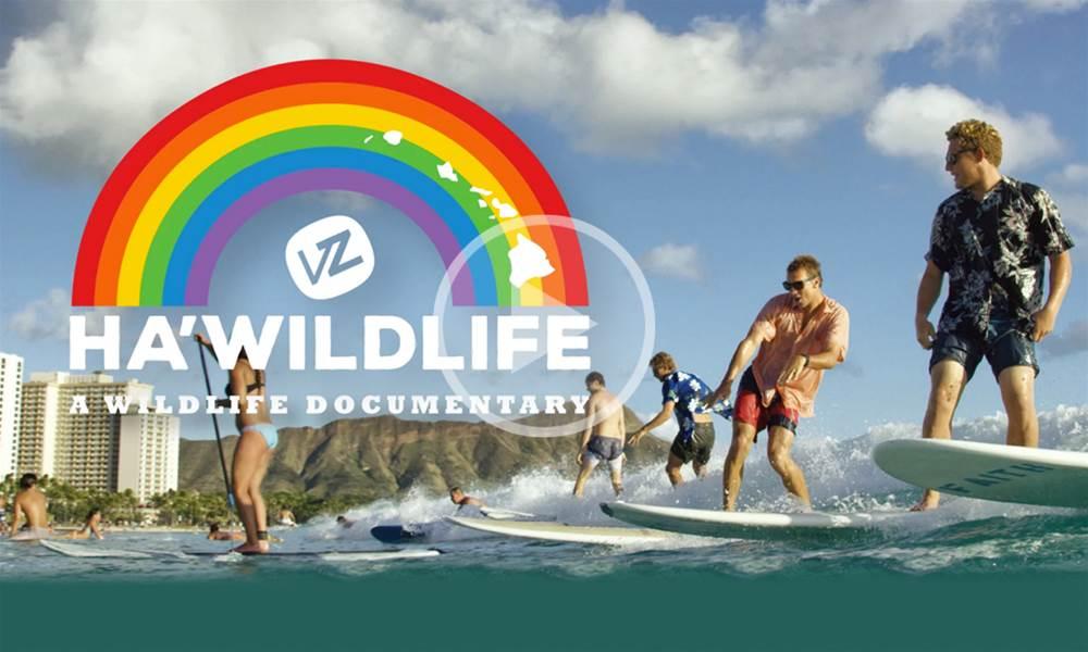 Ha'WildLife | A WildLife Documentary