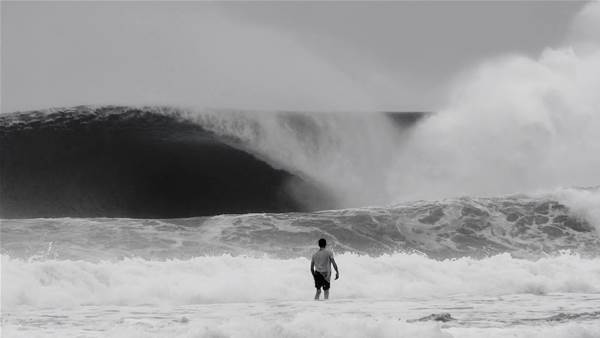 Walsh & Wightman – Young and Free in Indo