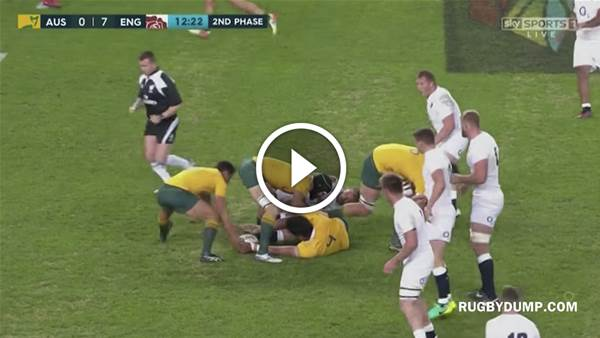 Wallabies whitewashed by England