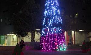 Photos: A Wi-Fi enabled Christmas Tree