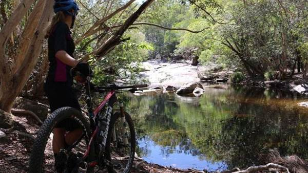 Tropical North Queensland by bike - and campervan