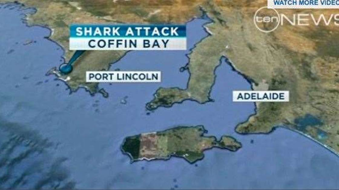 Two Great Whites Attack Diver – Now Feared Dead