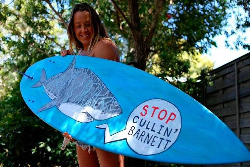 Surfing WA and South West Locals Back Shark Plan