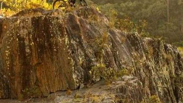 SHUTTLE REWIND - The tale of Kuranda DH