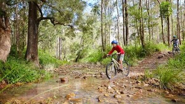 Atherton Mountain Bike Park gets an additional 20km's