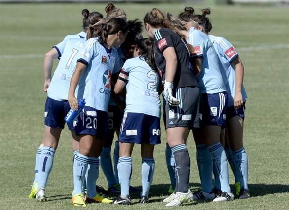 Familiar names make up 2014 Sydney FC squad