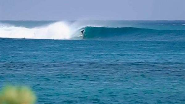 An Indonesian Odyssey With William Aliotti