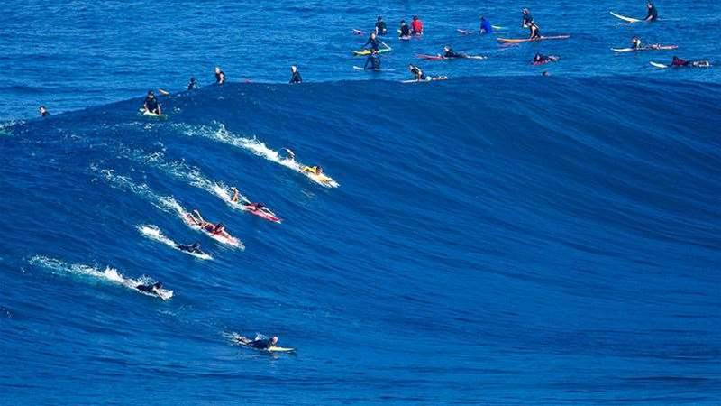 North Shore Moments: Anatomy of Jaws, with Albee Layer