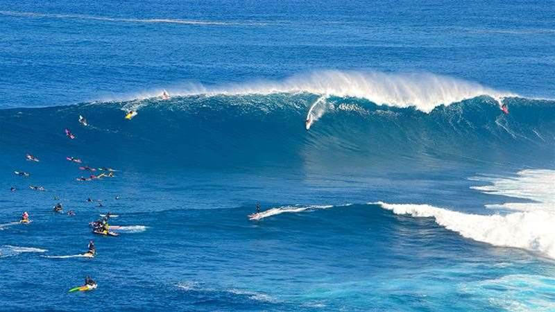 An Ode To Jaws, Maui's Beautiful Beast