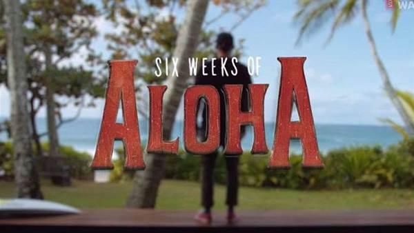 Watch Now! 6 Weeks Of Aloha