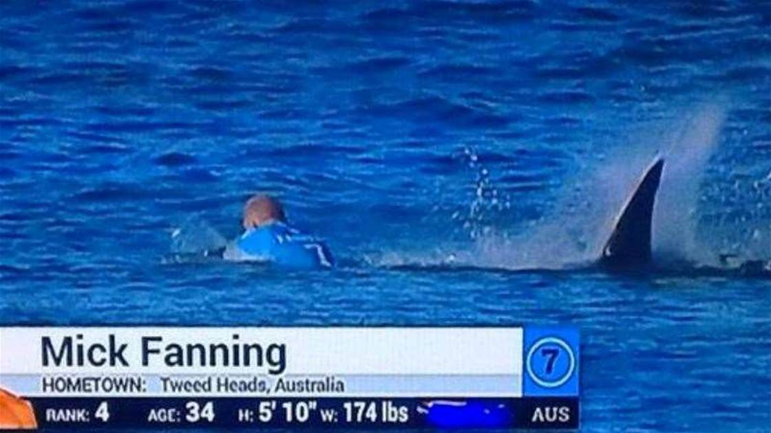 Mick Fanning Attacked By Shark in J-Bay Final