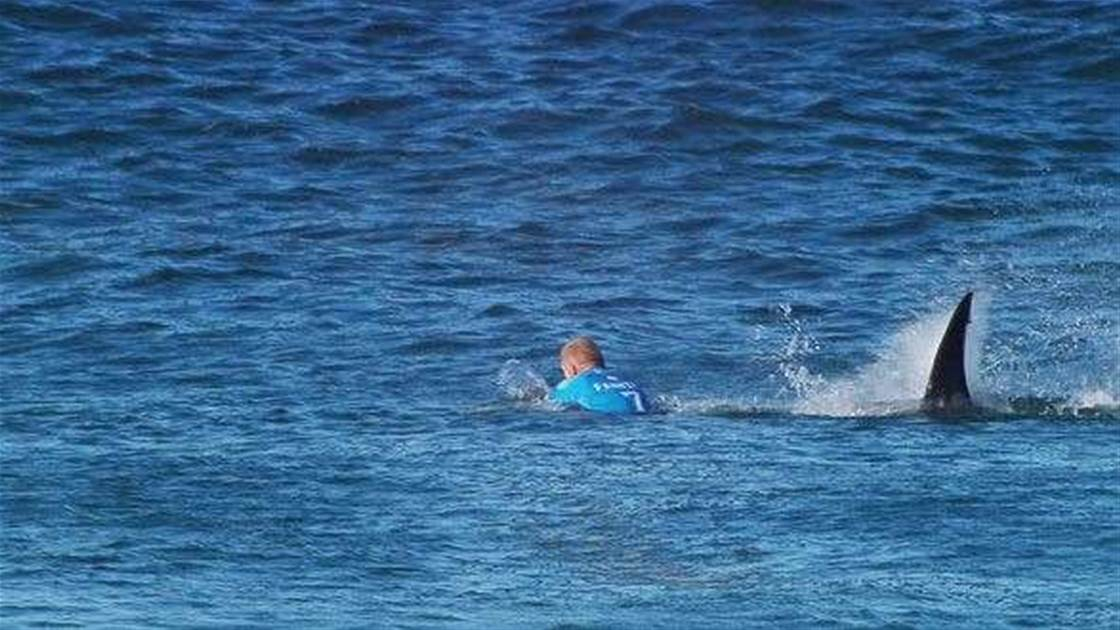 Mick Fanning ... and other champions of Aussie sport