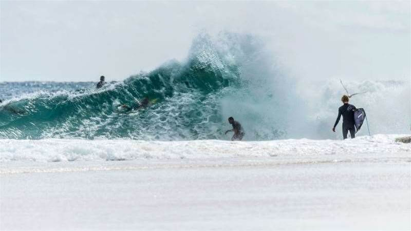 Gallery: Snapper From Behind the Rock