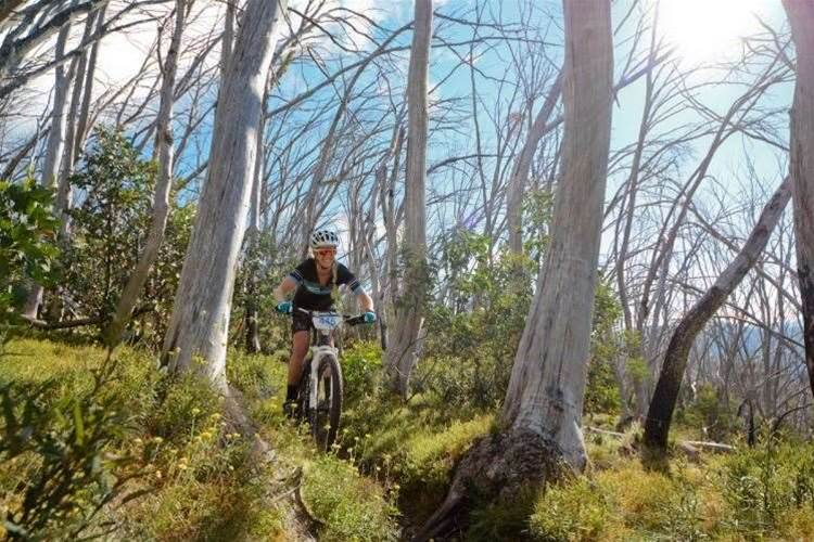 GT Bike Buller returns to Mt Buller in 2016