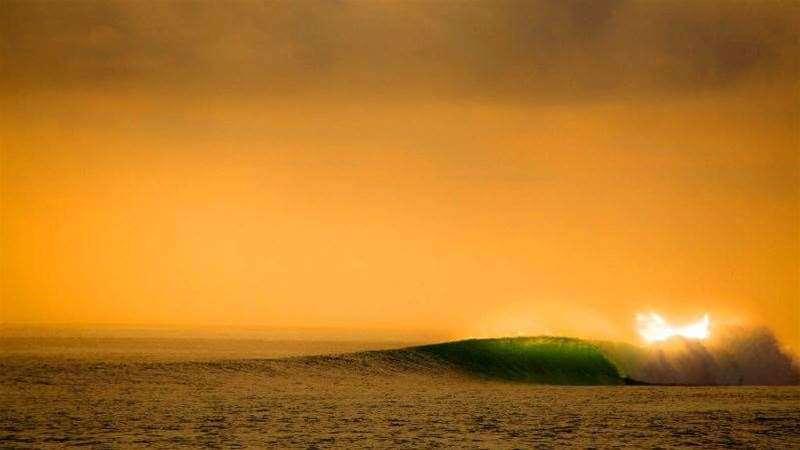 Tracks Travel: Sumatran Surfariis