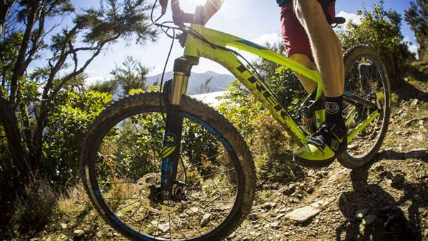 TESTED: Trek Fuel EX 9 29er