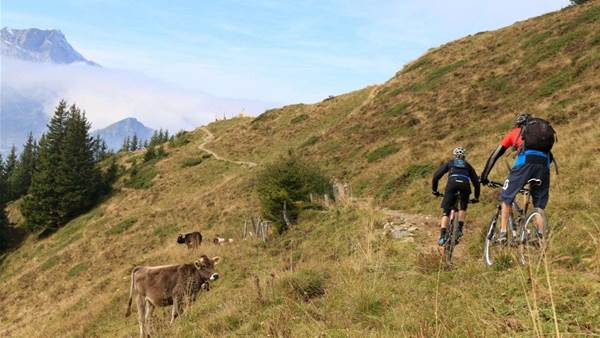 Mountain Biking in Engelberg - beneath the giants of Switzerland