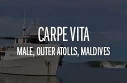 Carpe Vita