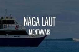 Naga Laut