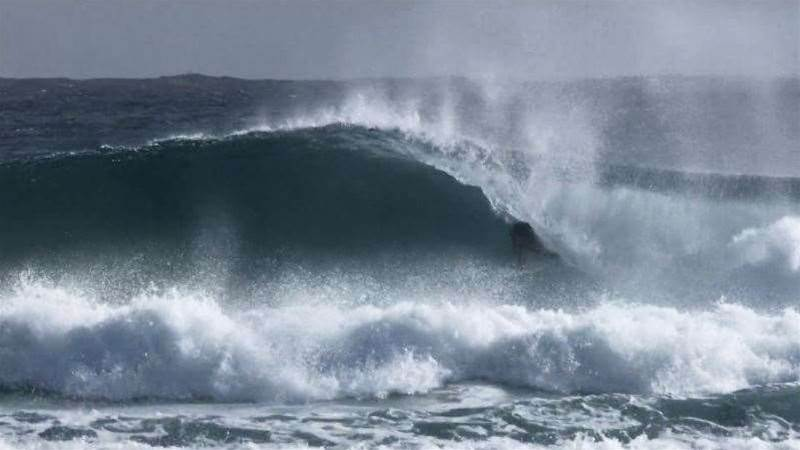 Brent Dorrington Running Wild on the Gold Coast