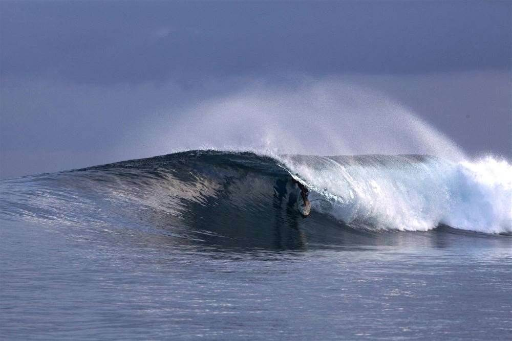World Surfaris - Maldives