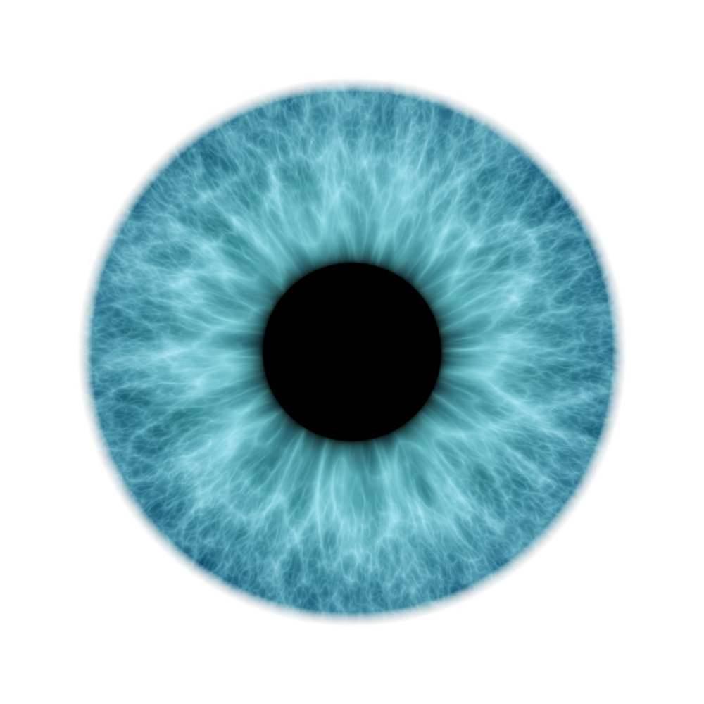 Australian Government offers $50m toward bionic eye effort