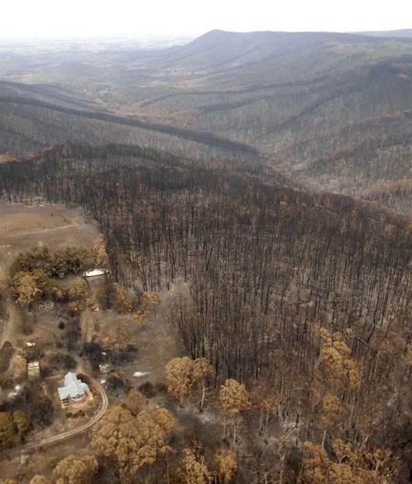 Bushfire victims offered broadband guarantee