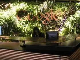 Google opens six-star Sydney 'Googleplex'
