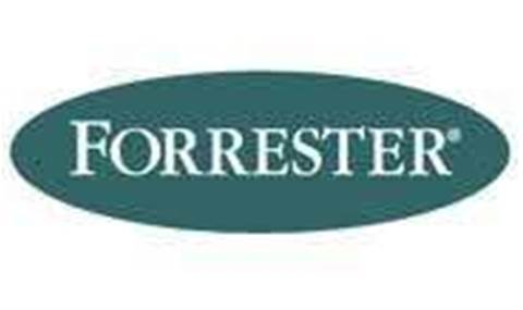 Forrester: Take care with the cloud