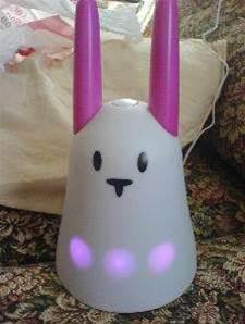 Wireless rabbit creates Internet buzz
