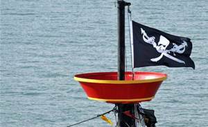 Accidental Pirate site is no honeypot: IP group
