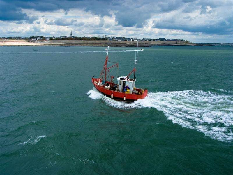 Fisherman accused of breaching internet cable zone