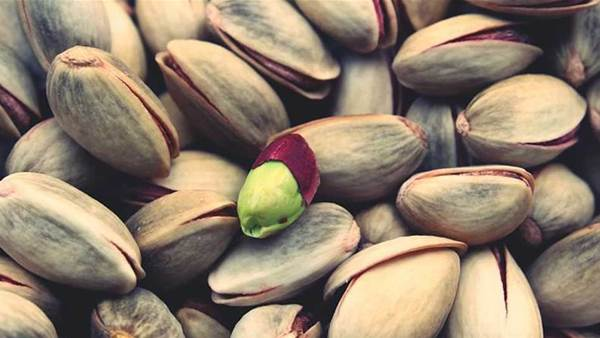 Everything you need to know about prebiotics