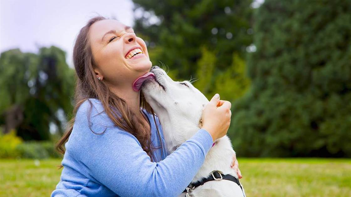 3 Gross Things That Can Happen If You Let Your Dog Lick Your Face