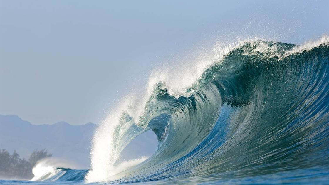 Pipeline The Kingmaker Tracks Magazine The Surfers