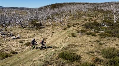Flybiking in the wilderness