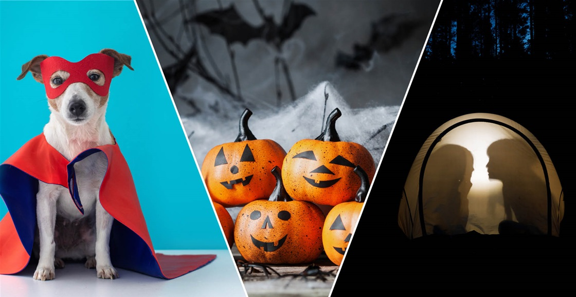 What is your fave thing about Halloween?