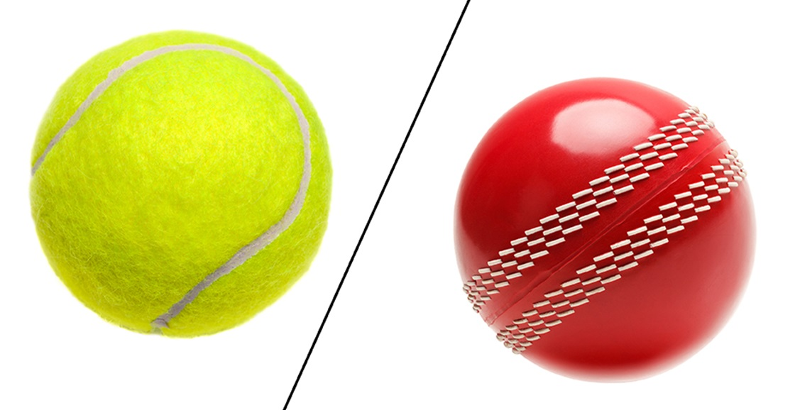 Which is better for backyard cricket?