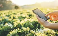 """Best Technology Services deploys IoT tech to create """"smart"""" farms"""