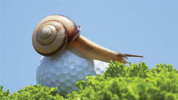 Slow Pokes: The solutions to slow play