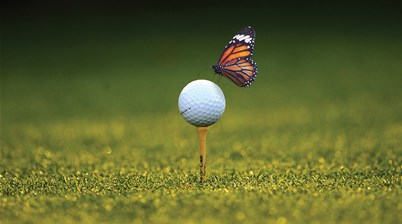 Growing the game: The Chrysalis Moment