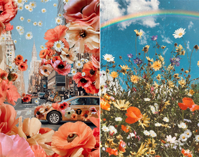 a map of dreams